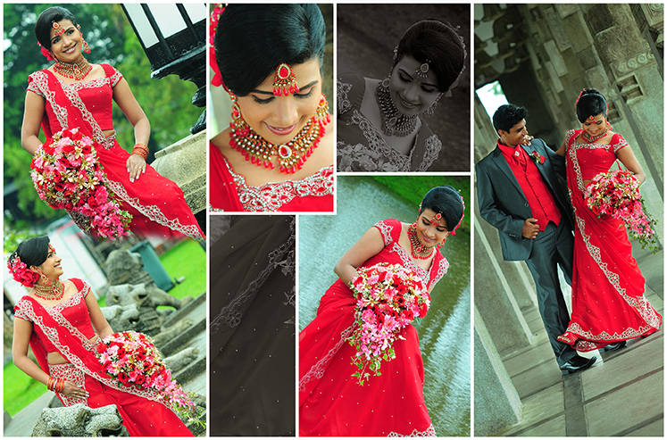 Homecoming Bride Gallery With Transitions Effects
